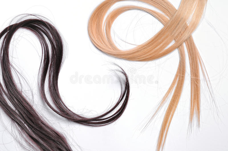 Ciuffi di capelli diritti marroni e biondi fotografia stock libera da diritti