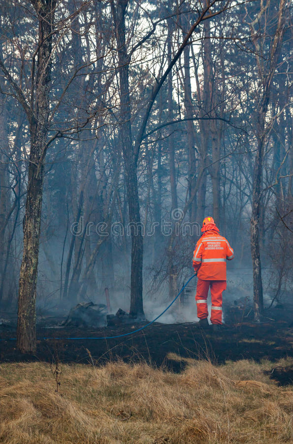 Civil protection of Friuli Venezia Giulia in action for extinguish a big fire in the forest stock photography