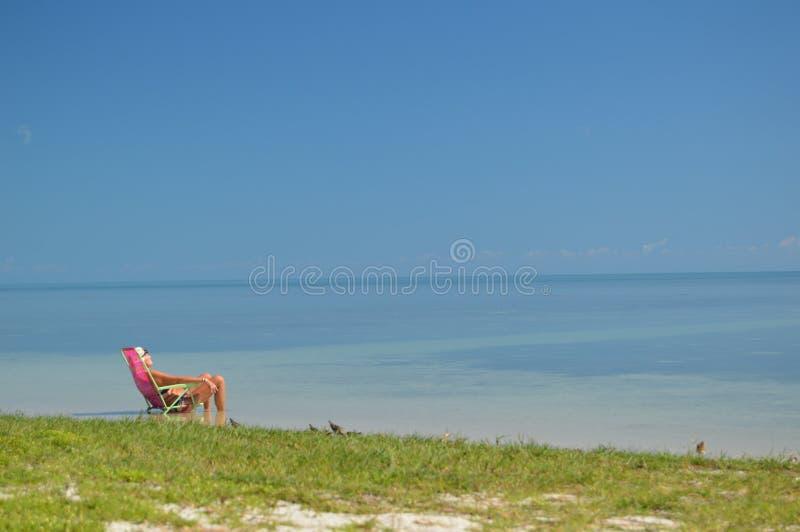 Clé Biscaney, Etats-Unis de Miami Beach photographie stock