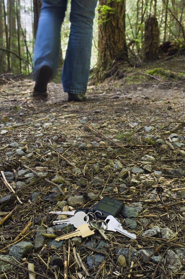 Clés perdues de maison et de véhicule dans la forêt photographie stock libre de droits