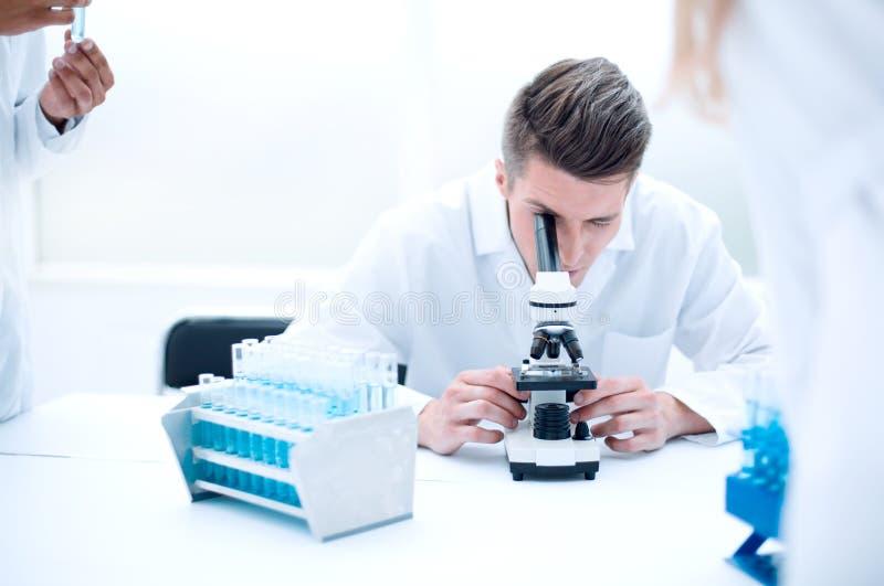 Clínicos serios que estudian elementos químicos en laboratorio fotografía de archivo