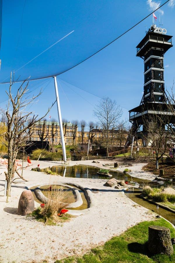 Clôture de flamant dans le jardin zoologique de Copenhague images stock