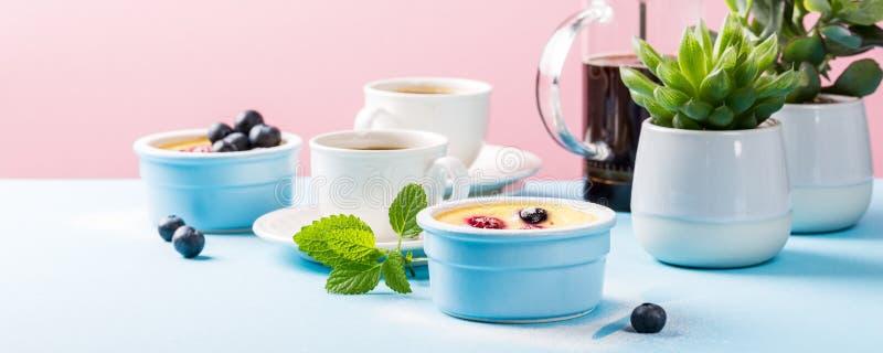 Clafoutis doux français traditionnels de dessert de fruit images libres de droits