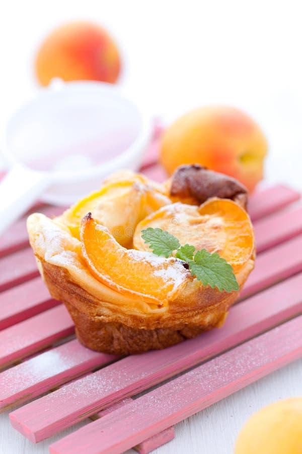 Clafoutis met abrikozen stock foto