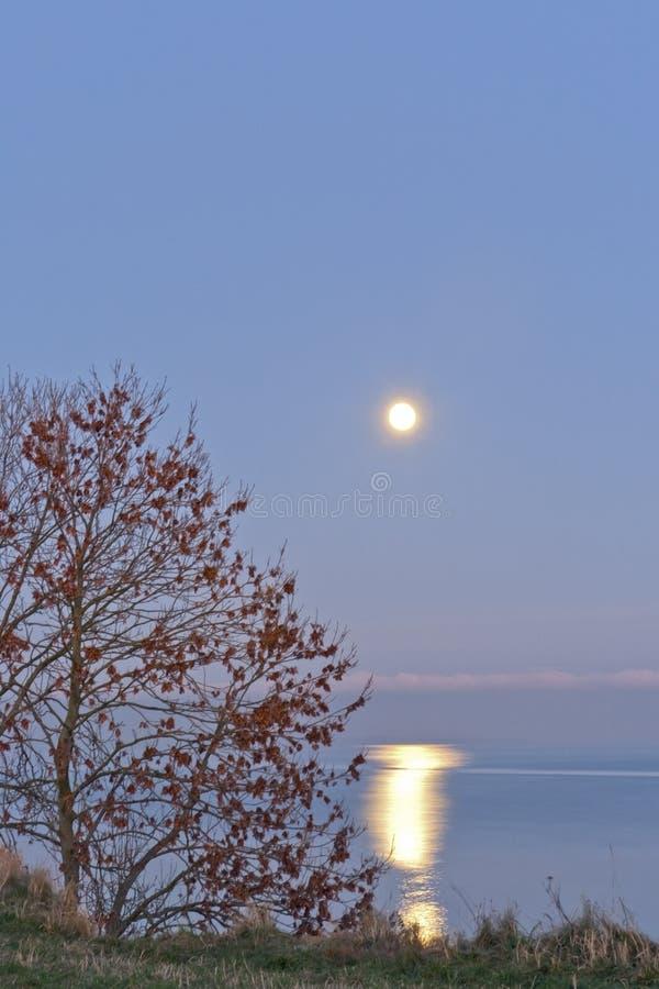 Clair de lune au-dessus de l'océan photographie stock libre de droits