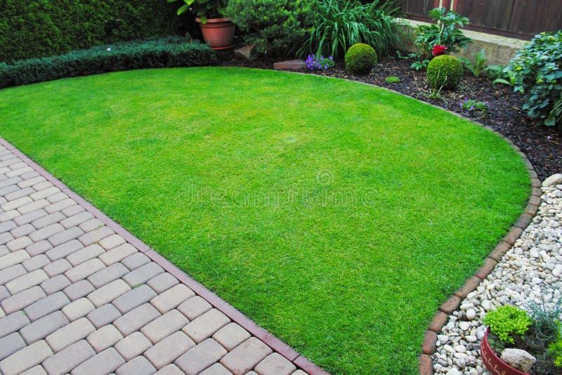 Clairement la pelouse dans le jardin photo libre de droits