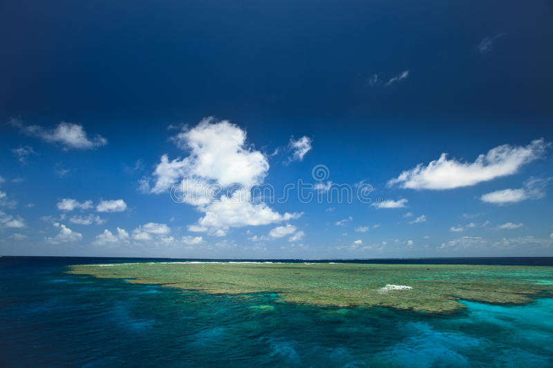 Download Beds In Great Barrier Reef Park, Australia Stock Photo - Image: 11905144