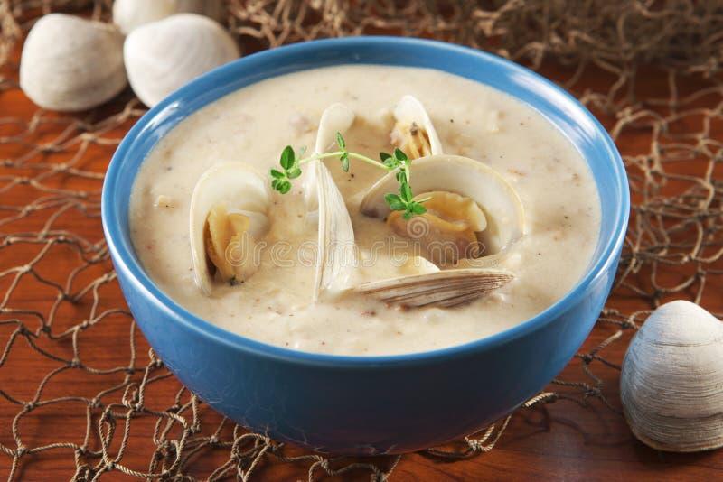 Clam chowder imagem de stock