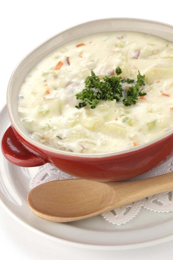 Download Chowder stock photo. Image of america, style, bowl, broth - 28899774