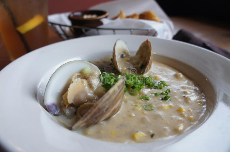 Clam Chowder stock foto's