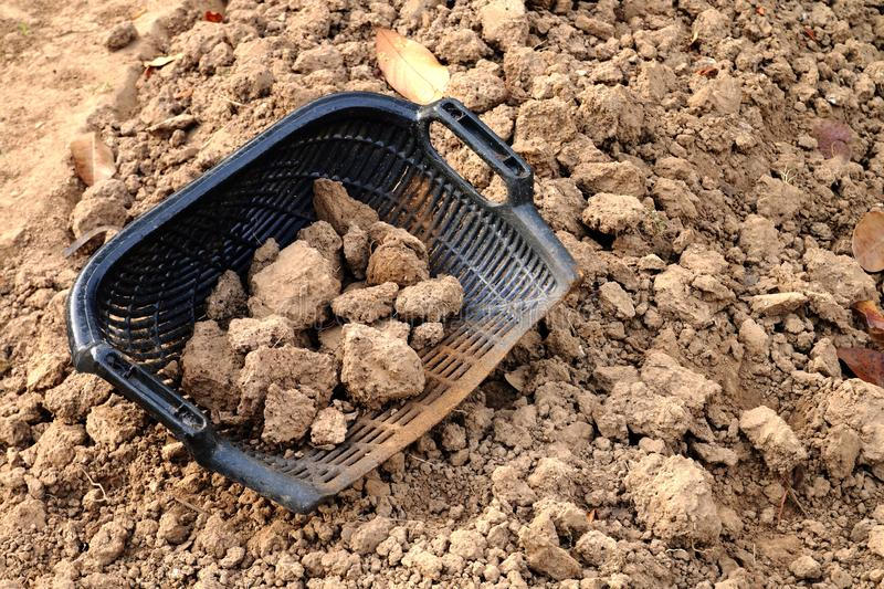 Clam-shell shaped basket with soil. On the plot stock photography