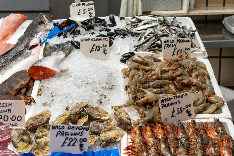 Clamms and crustaceans for sale. At a market stock image