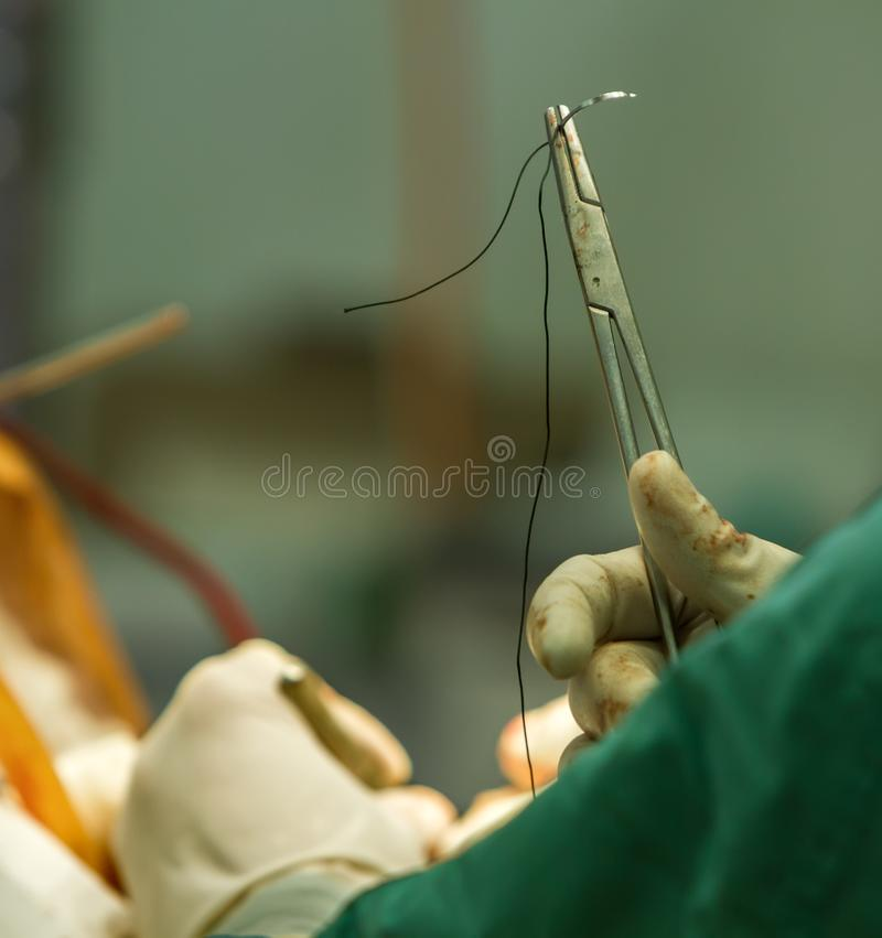 Clamp with a needle stock image