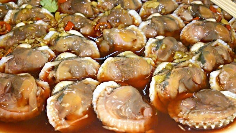 clams stock foto