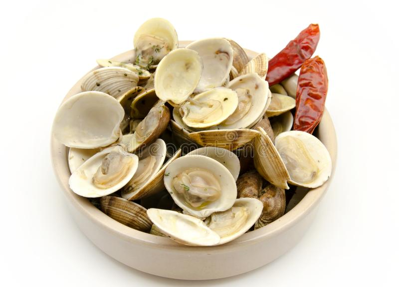 Clams with garlic royalty free stock photography