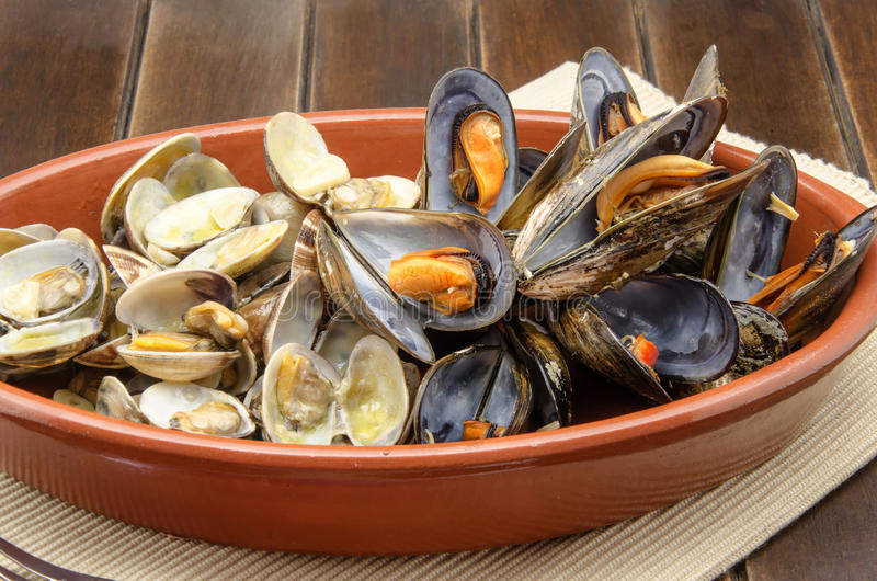 Clams and mussels royalty free stock photo