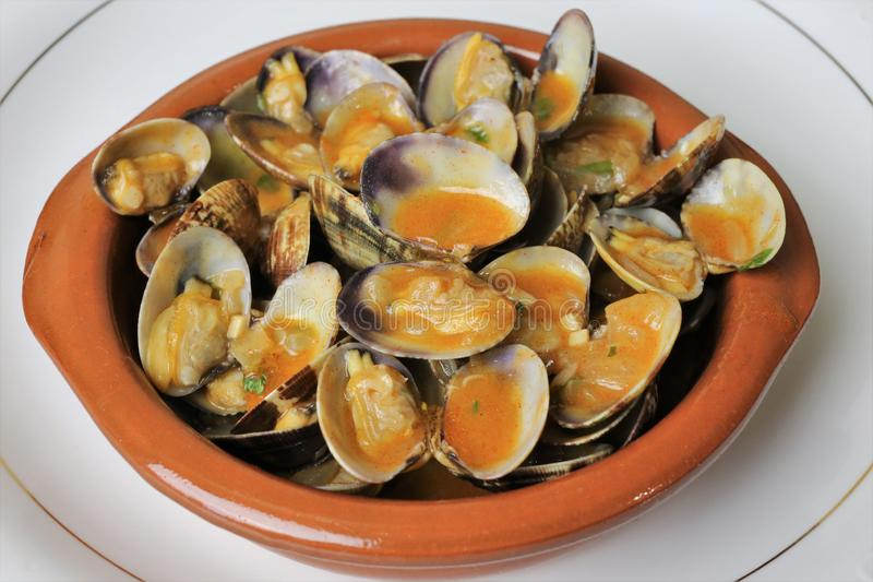 Clams in seafood sauce typical Andalusian and Spanish cuisine. Clams in seafood sauce is a typical meal of Andalusian and Spanish cuisine. The clams are in a stock photos