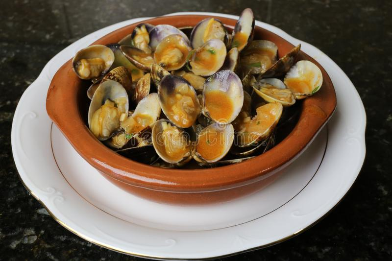 Clams in seafood sauce typical Andalusian and Spanish cuisine. Clams in seafood sauce is a typical meal of Andalusian and Spanish cuisine. The clams are in a royalty free stock image