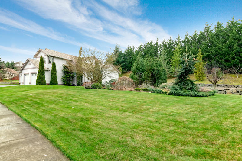 Clapboard siding house. Curb appeal. View of the clapboard siding house and big green lawn with fir trees from sidewalk stock image