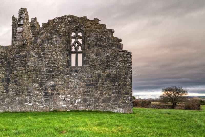 Clare Abbey stock photo