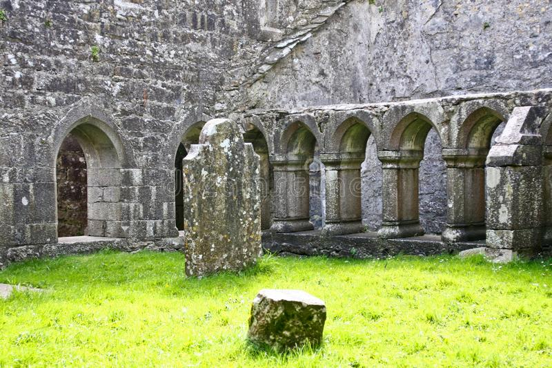 Ruins of Claregalway Friary, west of Ireland. The Claregalway Friary is a medieval Franciscan abbey located in the town of Claregalway, County Galway, Ireland stock photos