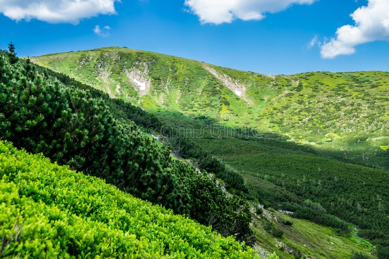 Clarified and shaded areas of hillside. Clarified and shaded areas of green hillside in Carpathian National Nature Park, Ukraine. High mountain range in june stock photo