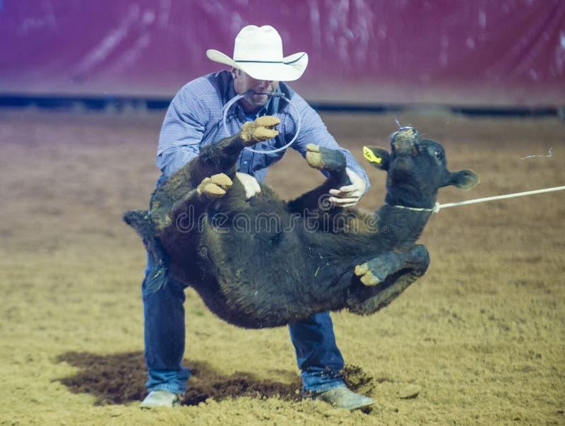 Clark County Fair en Rodeo stock fotografie
