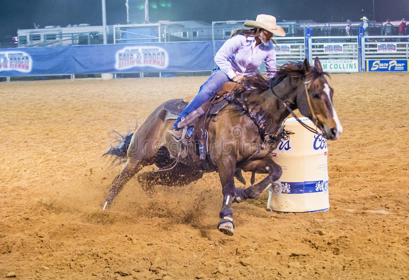 Clark County Fair en Rodeo royalty-vrije stock afbeelding