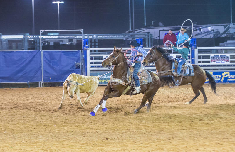 Clark County Fair en Rodeo royalty-vrije stock foto's