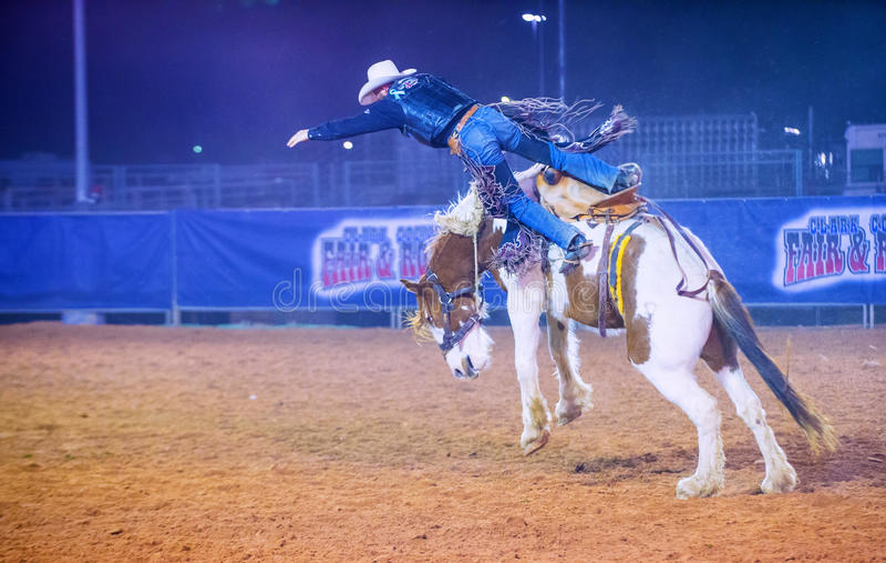 Clark County Fair en Rodeo stock afbeelding