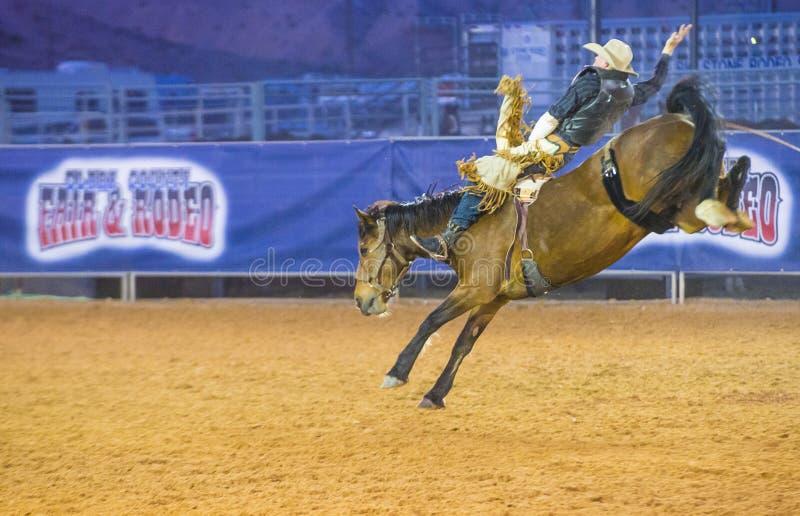 Clark County Fair en Rodeo royalty-vrije stock foto's