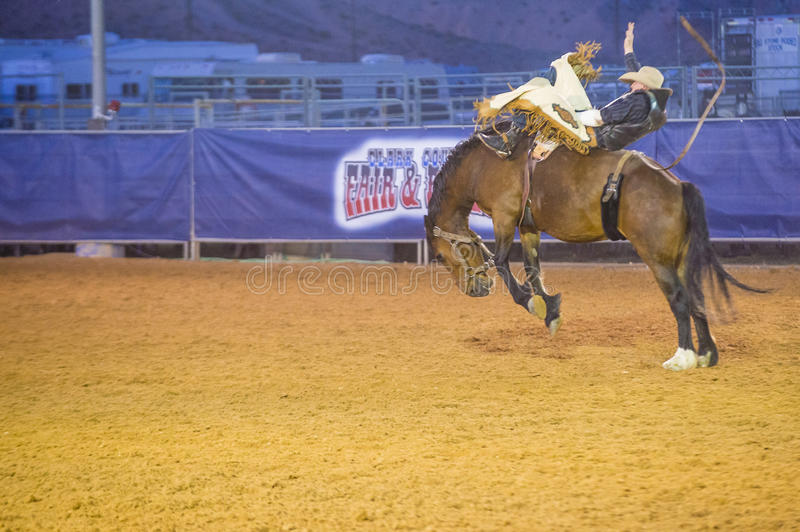 Clark County Fair And Rodeo Editorial Image Image Of