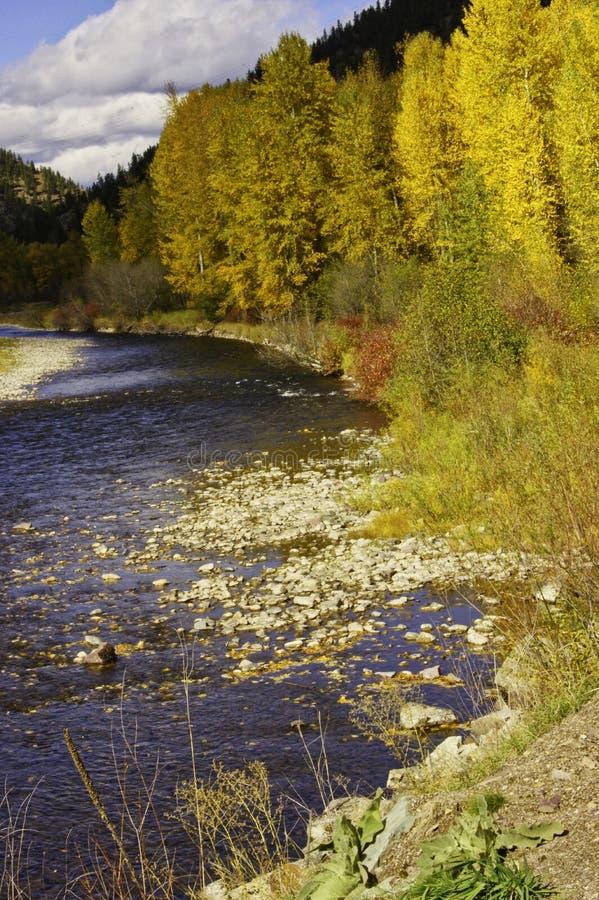Clark Fork River nel Montana immagini stock