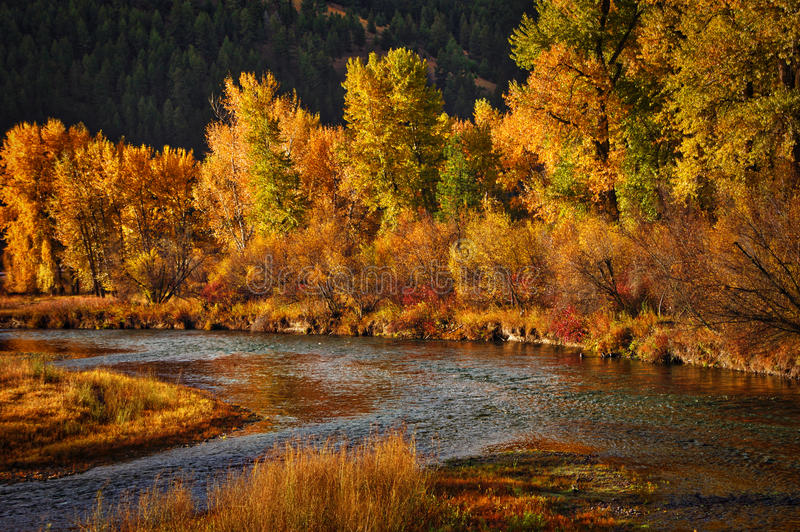 Clark Fork River Western Montana photos stock