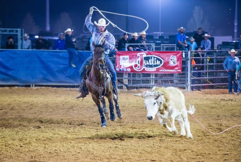 Clark okręgu administracyjnego rodeo i jarmark zdjęcie stock