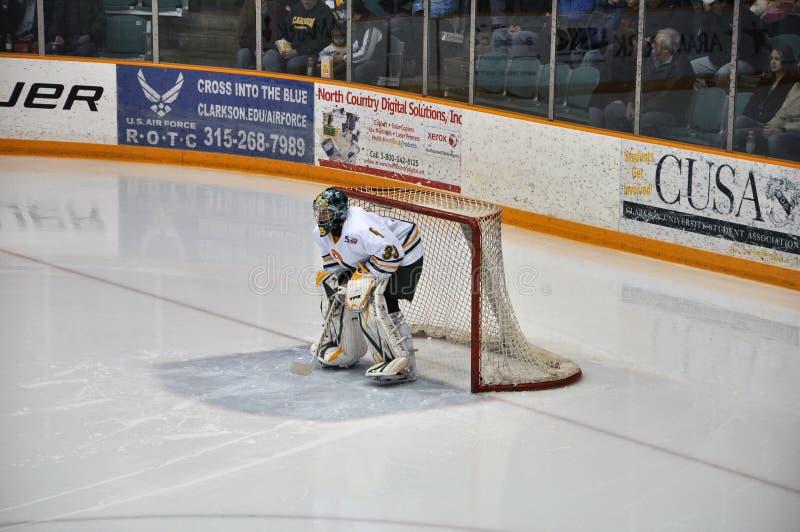 clarkson bramkarza hokeja lodu uniwersytet zdjęcie stock