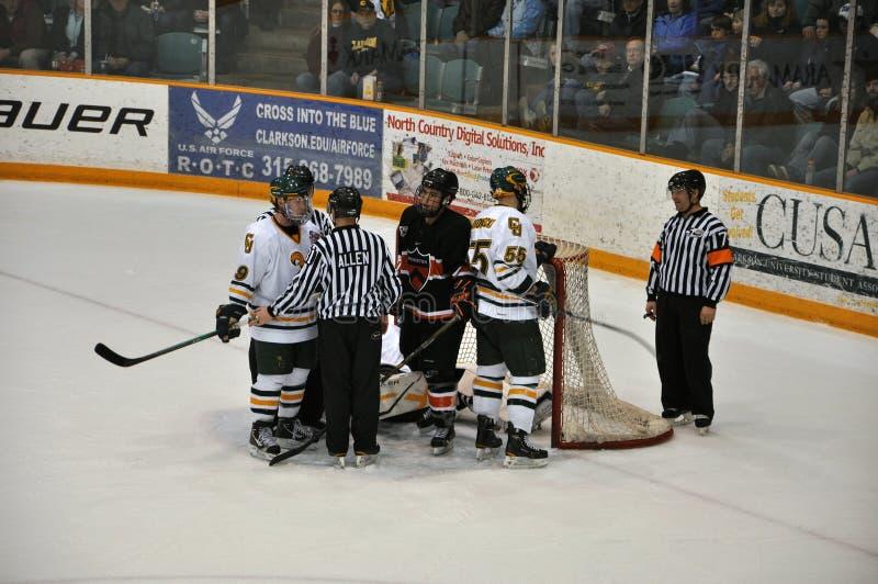 clarkson gemowy hokeja lodu ncaa uniwersytet zdjęcia royalty free