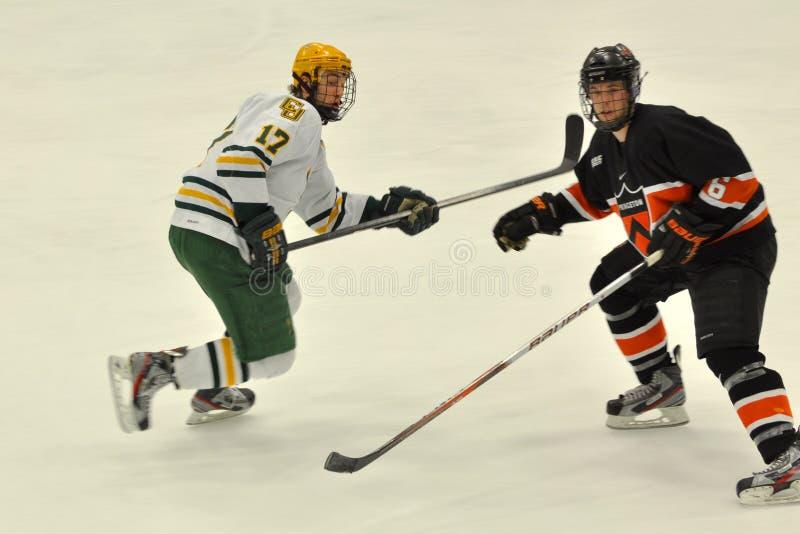 clarkson gemowy hokeja lodu ncaa uniwersytet fotografia stock