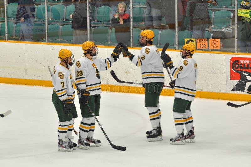 clarkson gemowy hokeja lodu ncaa uniwersytet zdjęcie royalty free