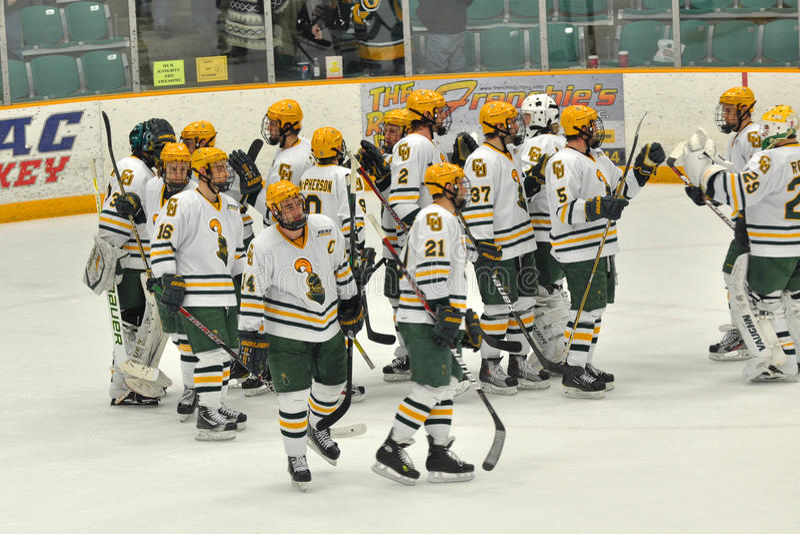 clarkson gemowy hokeja lodu ncaa uniwersytet obrazy royalty free