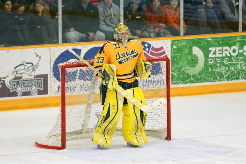 Clarkson Goalie #33 i NCAA-hockeylek arkivfoto