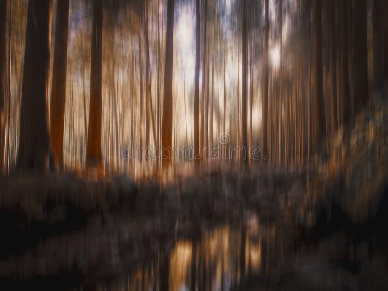 Claro borroso con reflexiones de la corriente del agua, árboles, madera, bosque del arbolado, para el fondo Naturaleza hermosa en imagen de archivo libre de regalías