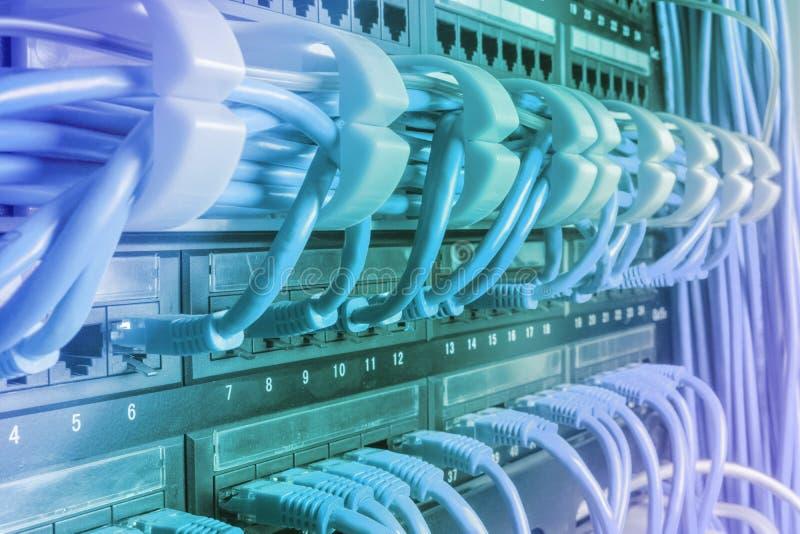 Claro - cabos azuis do Internet do cabo de remendo conectados imagem de stock royalty free
