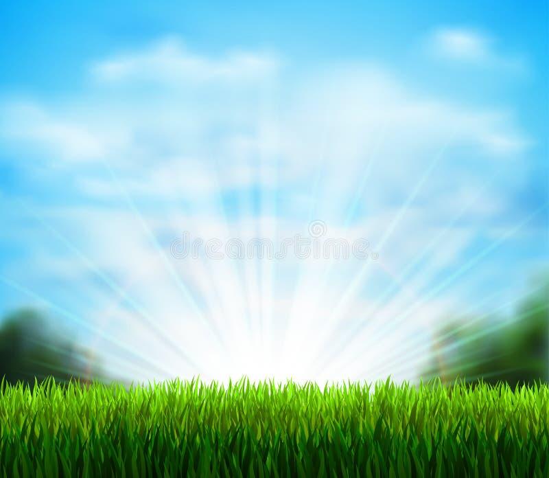 Claro verde fresco con la hierba Sazone el fondo con el cielo azul, la sol y nubes mullidas blancas ilustración del vector