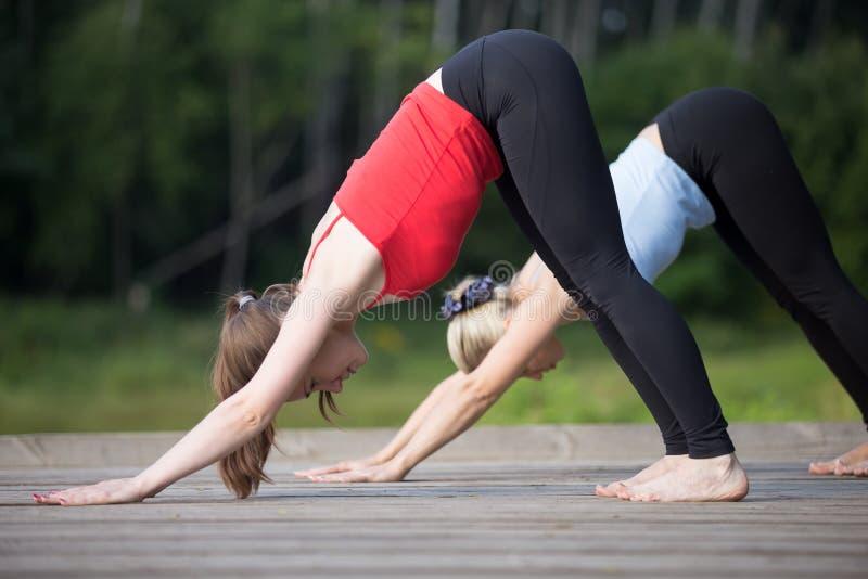 Clase de la yoga: Actitud boca abajo del perro imagen de archivo libre de regalías