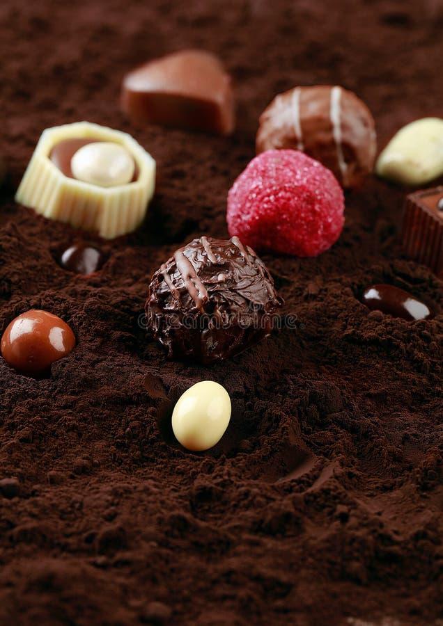 Clase del chocolate en el cacao fotografía de archivo libre de regalías