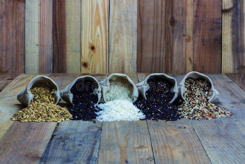 Clases de Drifferent de arroz en pequeños bolsos de arpillera fotografía de archivo libre de regalías