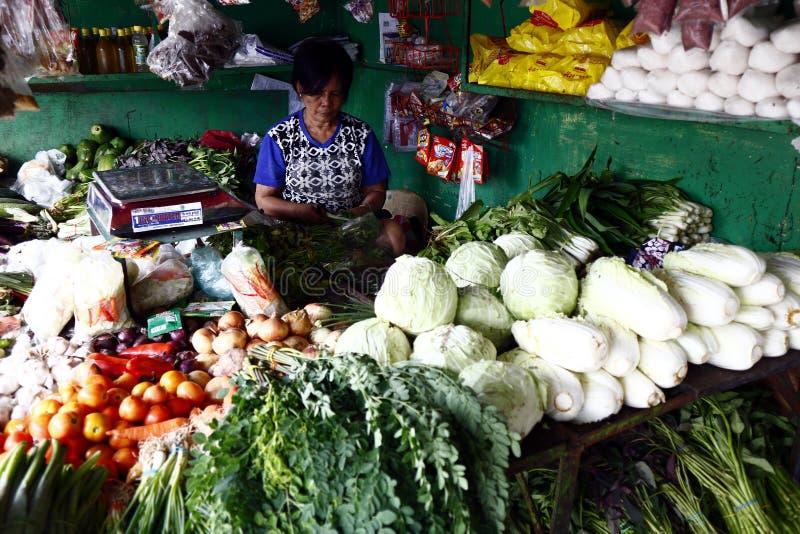 Clasificó verduras frescas en la exhibición en la parada vegetal en un mercado público foto de archivo libre de regalías