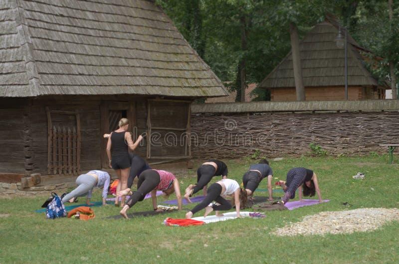 Classe exterior da ioga imagens de stock royalty free