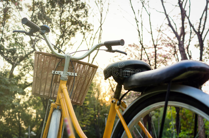 Classic Bicycle at sunset in the park or deep forest.  stock photo
